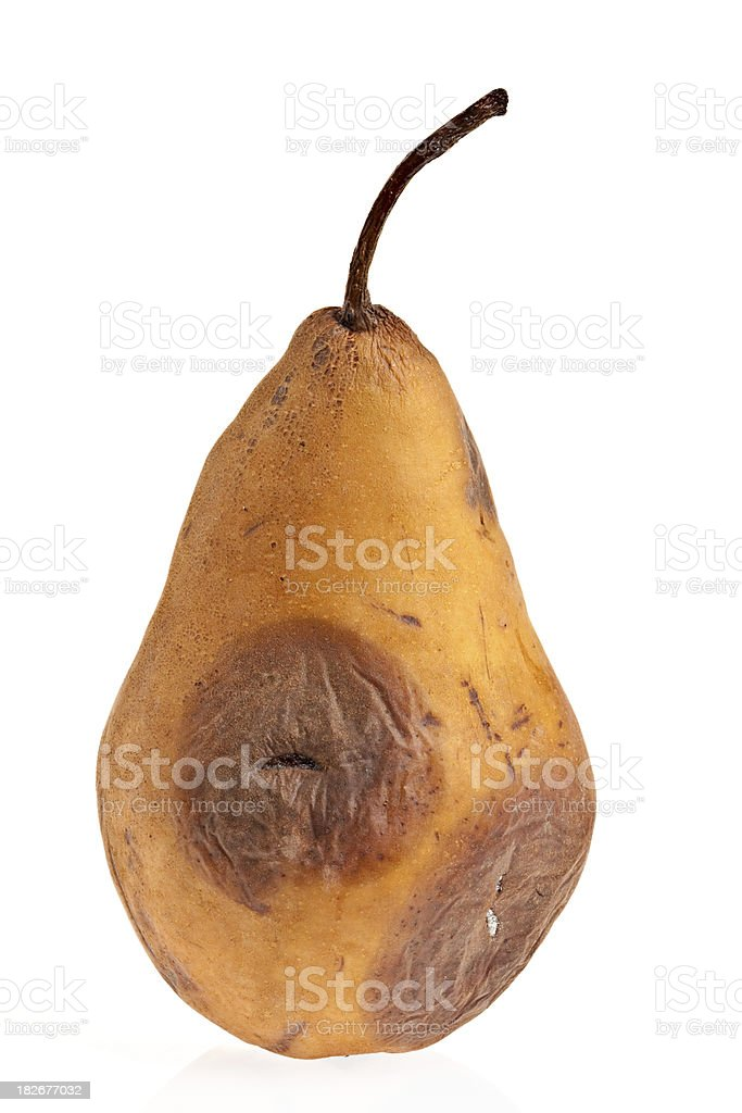 Rotten Pear royalty-free stock photo