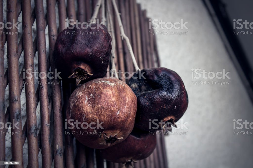 rotten pomegranate hunging stock photo