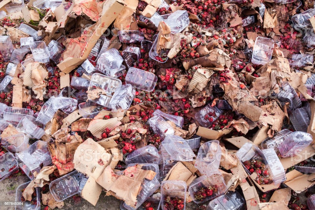 Rotten strawberries on the landfill stock photo