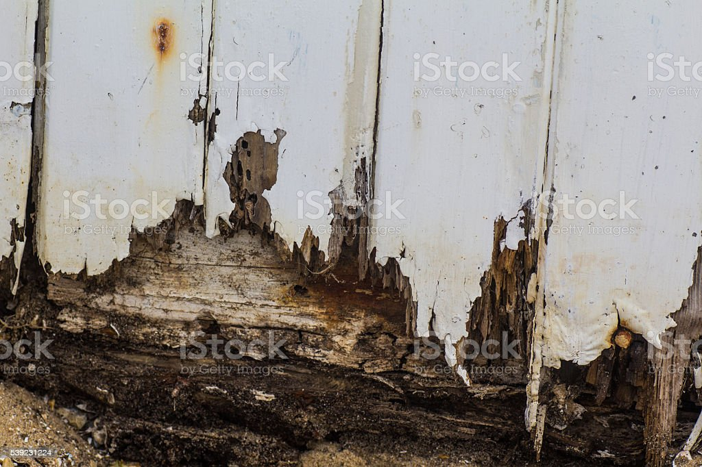 Rotten Wood from Beach Hut royalty-free stock photo