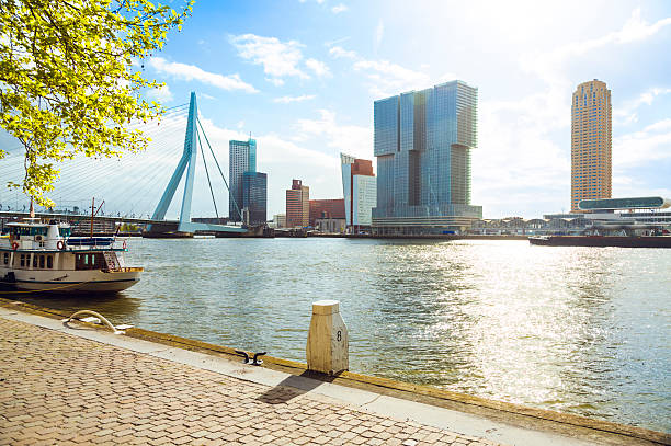 Rotterdam downtown, Holland Cityscape of Rotterdam, Netherlands. meuse river stock pictures, royalty-free photos & images