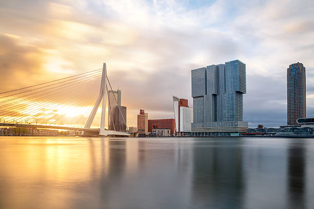 rotterdam skyline with erasmusbrug bridge in morning ,netherland - rotterdam foto e immagini stock
