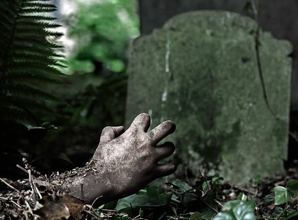 zombie - plants of zombies stock-fotos und bilder