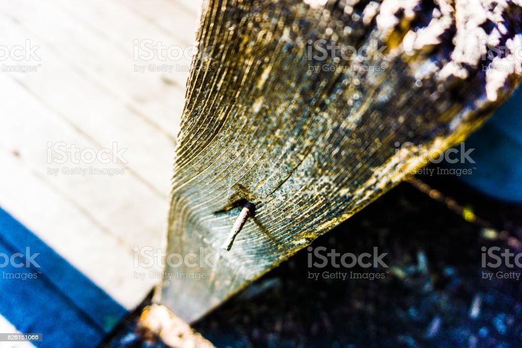 Rotting Post stock photo