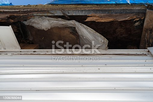 Rotting rafters and plywood on the underside of a roof with the fascia removed.