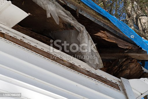 Angle view of rotting rafters and plywood on the underside of a roof with the fascia removed.