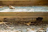 istock Rotting Timber Retaining Wall 1277918030