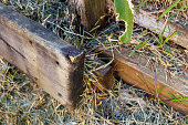 istock Rotting Timber Retaining Wall 1277918038
