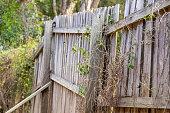 istock Rotting Timber Retaining Wall 1277918049