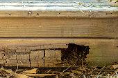 istock Rotting Timber Retaining Wall 1277918055