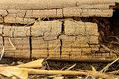 istock Rotting Timber Retaining Wall 1277918083