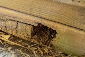 istock Rotting Timber Retaining Wall 1277918100