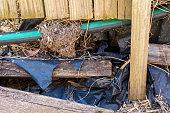 istock Rotting Timber Retaining Wall 1277918107