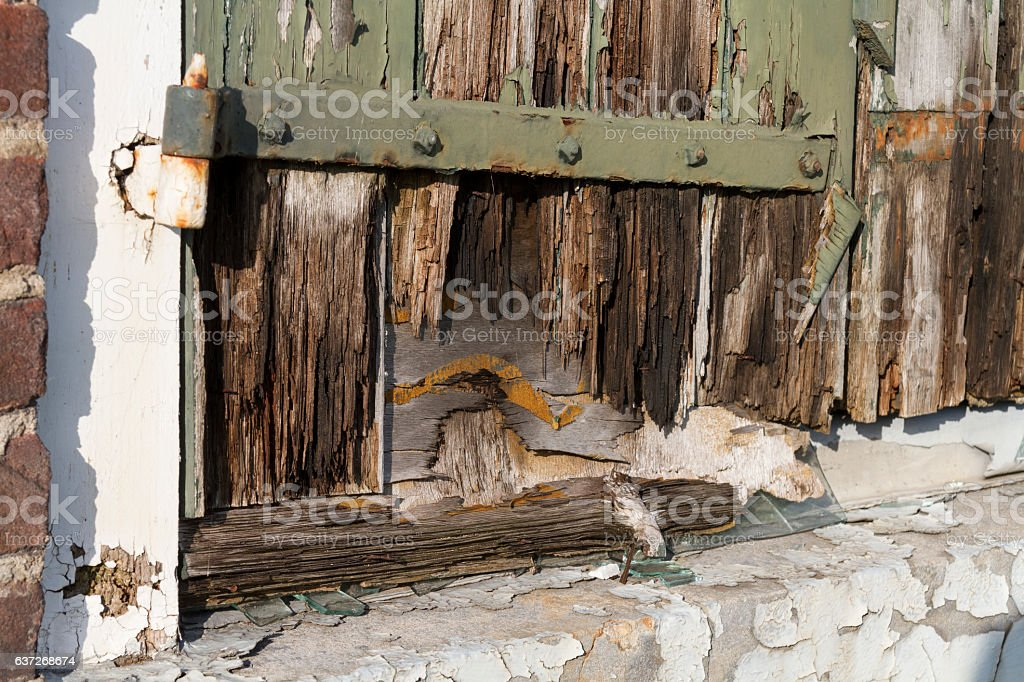 rotting wood stock photo