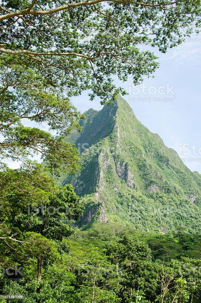 Rotui Mountain Scenic View ... Moorea royalty-free stock photo