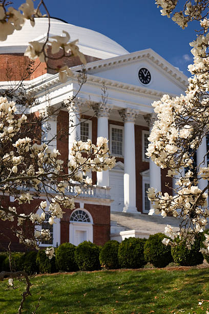 Rotunda at UVA in spring University of Virginia Rotunda, designed by Thomas Jefferson, in springtime charlottesville stock pictures, royalty-free photos & images