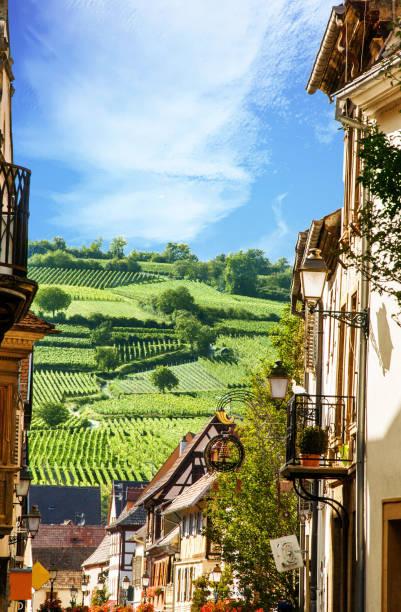 Rouffach.Vue sur les vignobles depuis le village, Alsace. Haut-Rhin. Grand Est - foto stock
