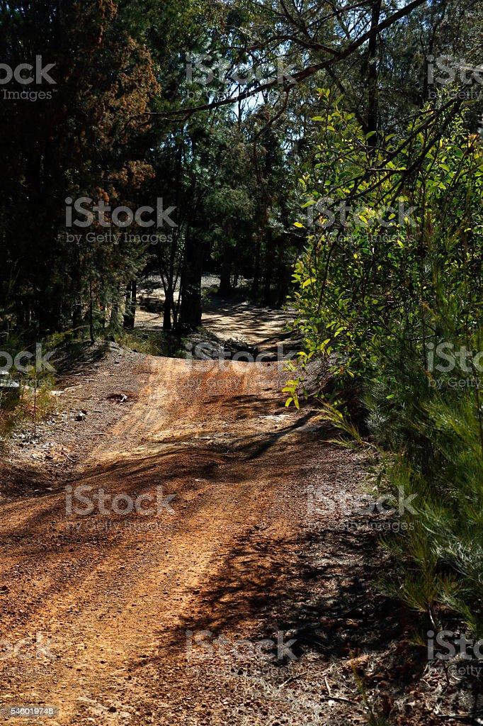 Rough Country Dirt Road Single Lane stock photo