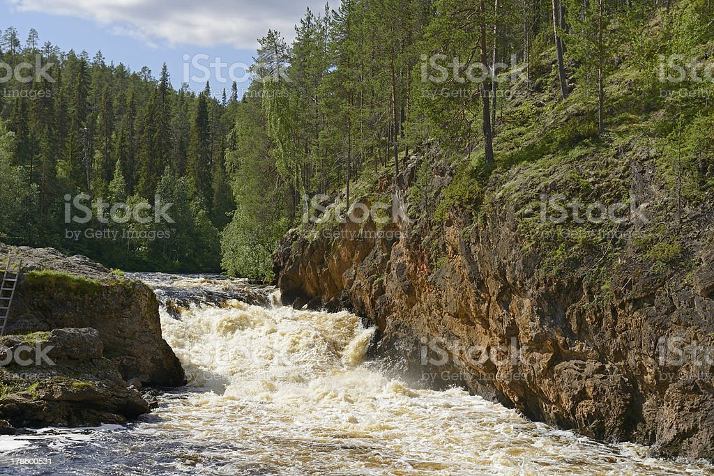 Rough river with rapids. Oulanka national park stock photo