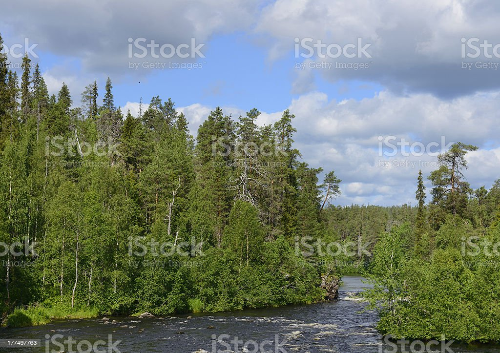 Rough river with rapids stock photo