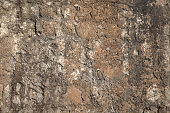 Dramatic surface of flat stones forming high detailed natural backdrop
