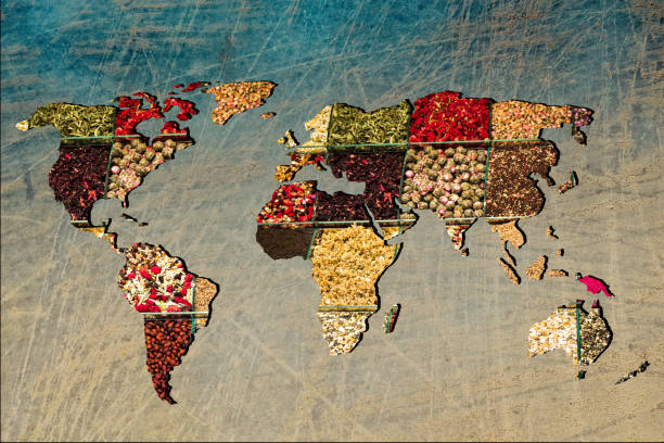 Roughly outlined world map with veraity of spice filling stock photo