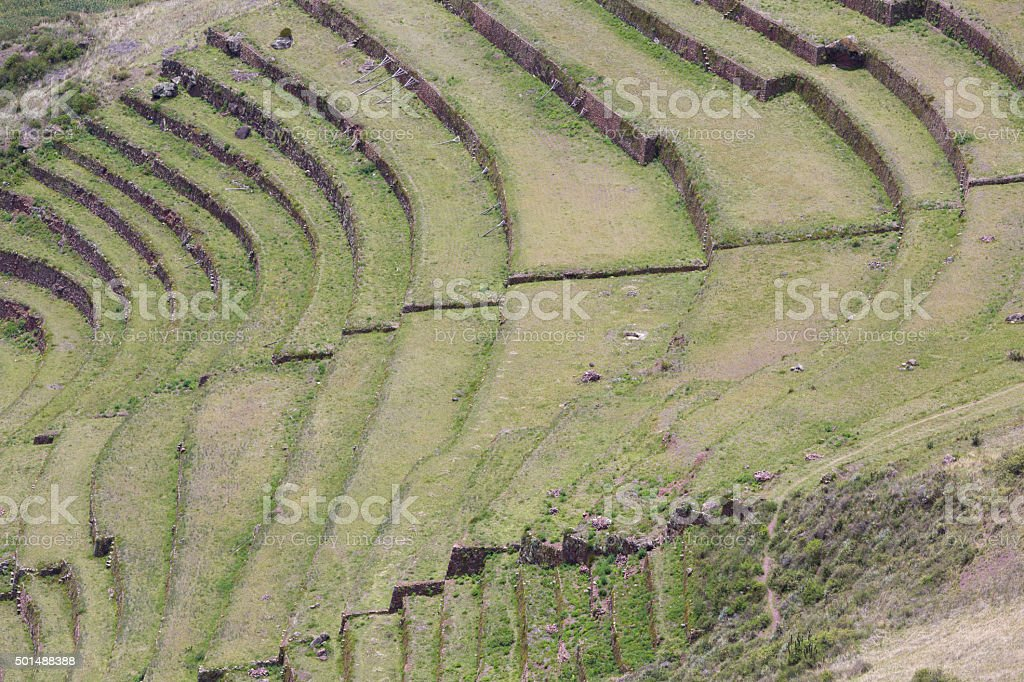 Redondo Agricultura Terrazas De Incas En Sagrado Valley Perú