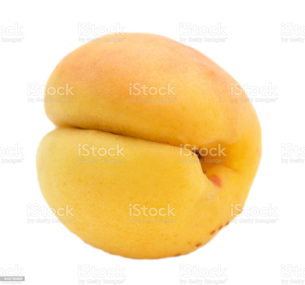 Round bright apricots isolated on white background stock photo