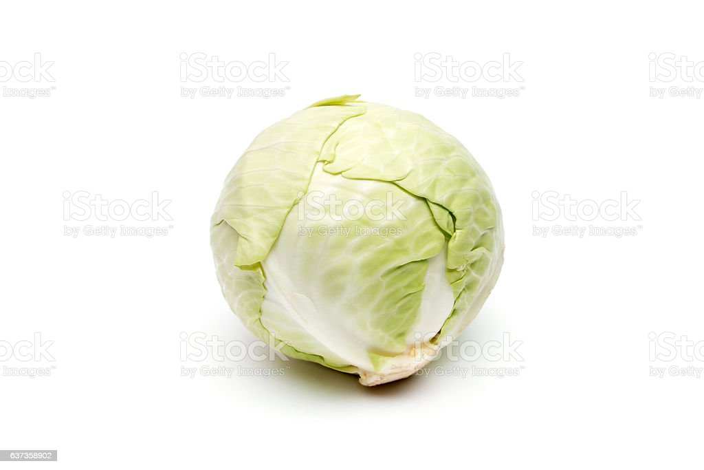 round cabbage green stock photo