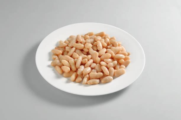 round dish with a portion of boiled white beans - fagioli cannellini foto e immagini stock