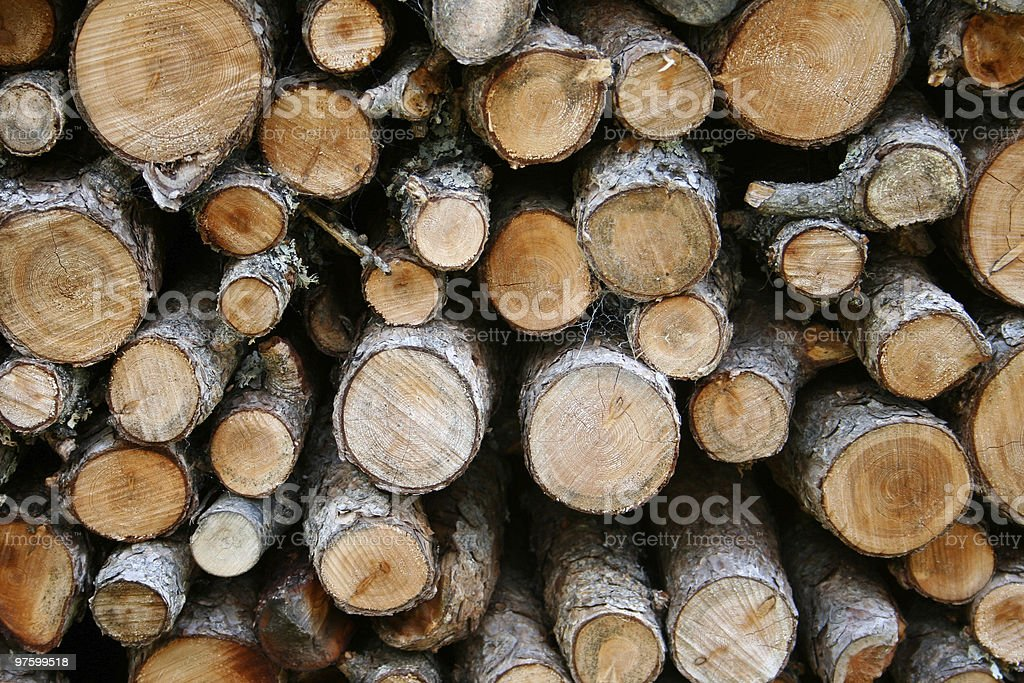 round firewood royalty-free stock photo
