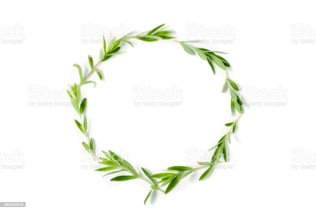 round frame from thyme fresh herb isolated on white background Lizenzfreies stock-foto