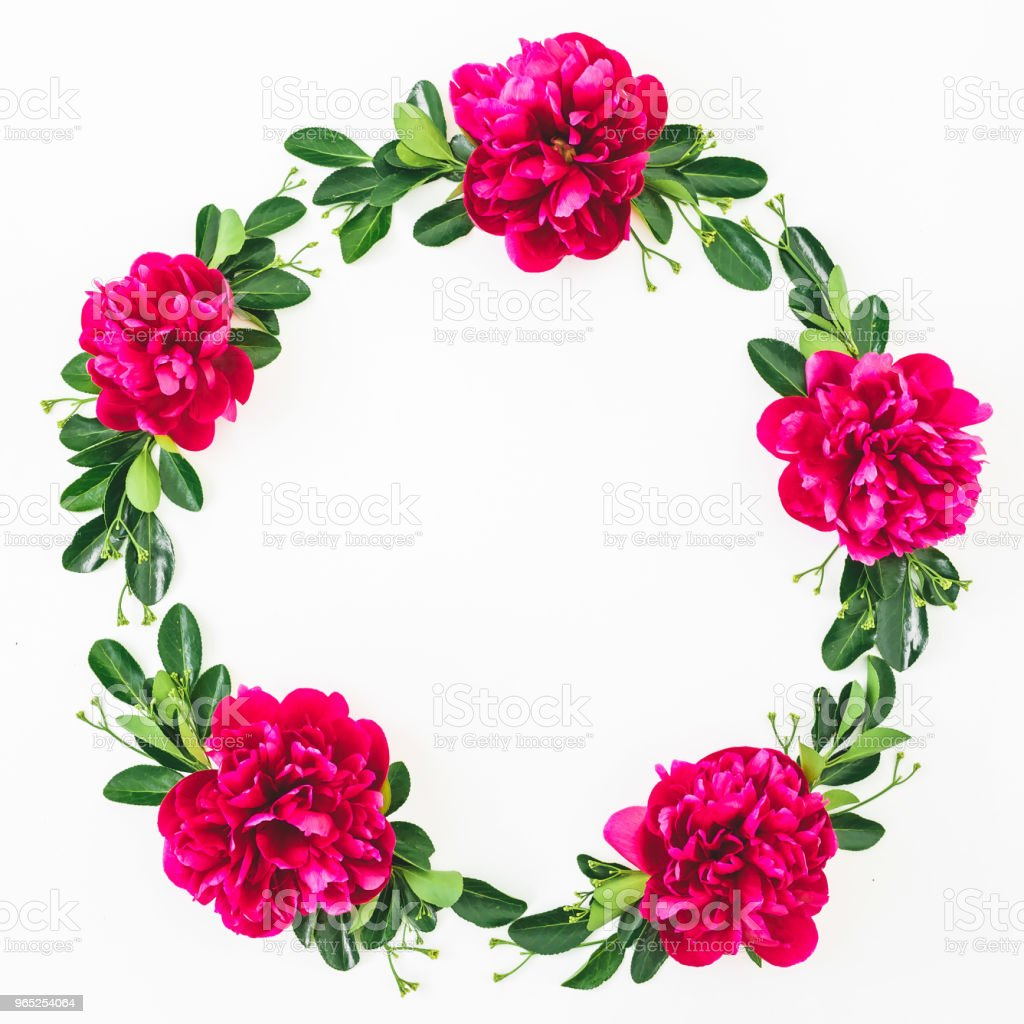 Round frame of peonies flowers and leaves on white background. Flat lay, top view. Pattern made of flowers royalty-free stock photo