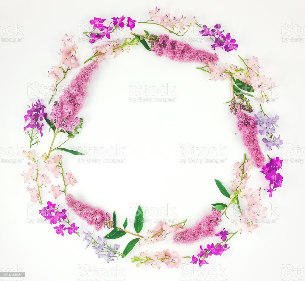 Summer or spring round frame with colorful toadflax flowers on white...