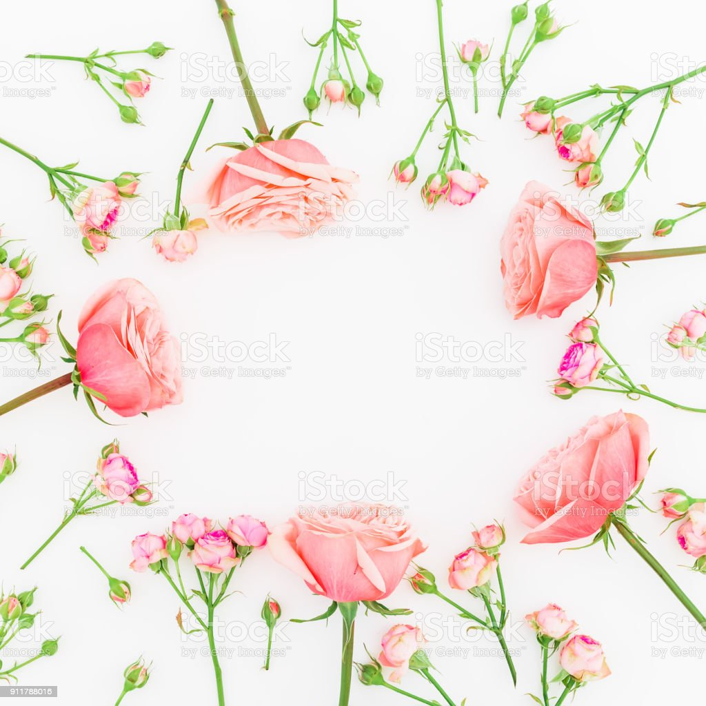 Round frame with pink roses isolated on white background. Flat lay,...