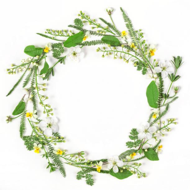 ラウンド フレームの花輪は春の花、白い背景で隔離の葉から成っています。フラットが横たわっていた。平面図です。 - リース ストックフォトと画像