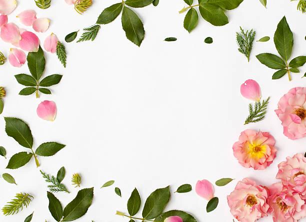 Round frame wreath pattern with rose flowers petals succulent picture id609801452?b=1&k=6&m=609801452&s=612x612&w=0&h=z1zbnsbmo11u29q5v1b56fdi dwdsh8iweisp5jsbvq=