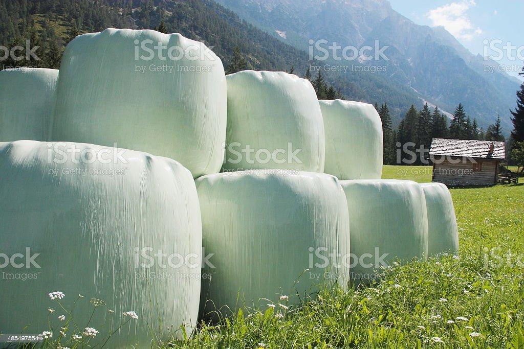 Round hay bales in plastic wrap cover stock photo
