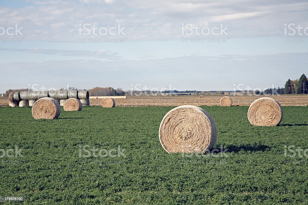 Round Hay Bales On The Prairie royalty-free stock photo