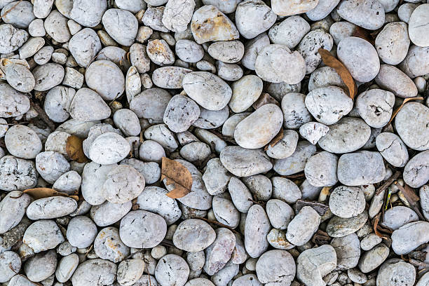 round stone on the ground texture - garten ideen wege stock-fotos und bilder
