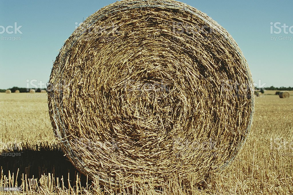 Round Straw Bale royalty-free stock photo