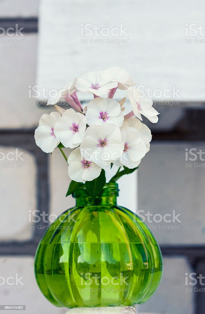 Round Vase With Small Red Flowers Stock Photo Download Image Now Istock