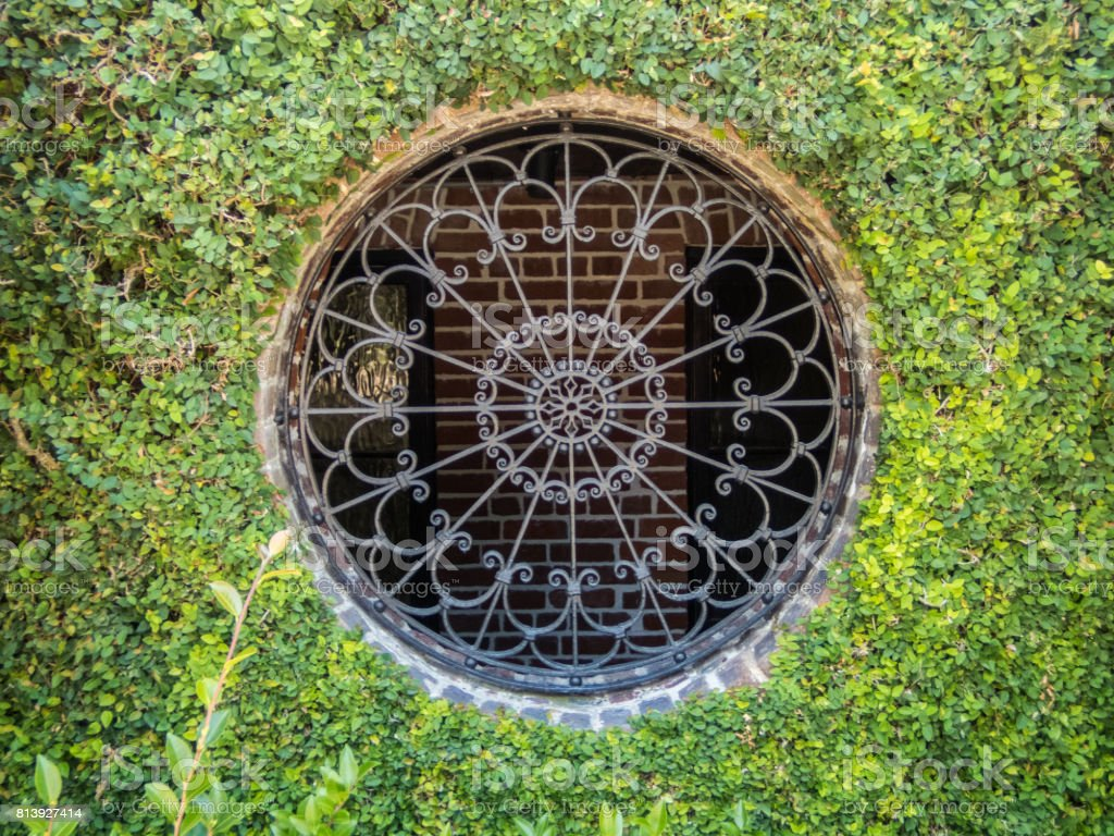 Round window with creeping fig stock photo