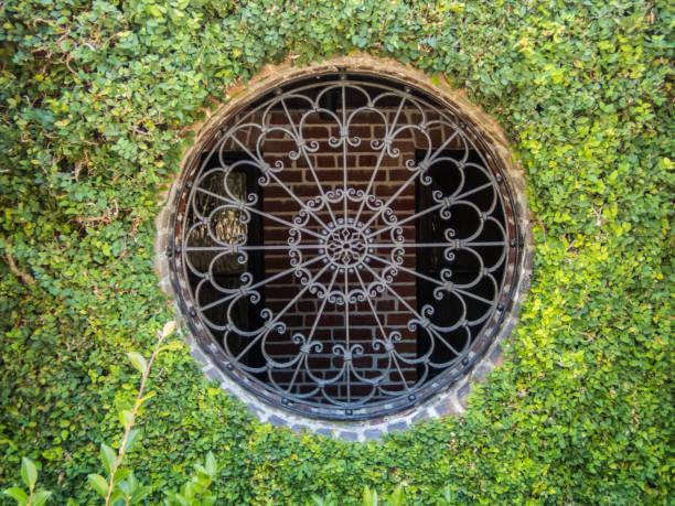 round window with creeping fig - ivy building imagens e fotografias de stock