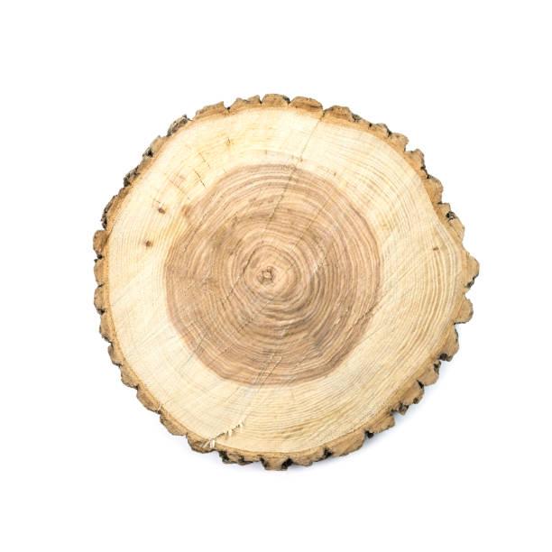 runde aus holz geschnitten board - eichenholz stock-fotos und bilder