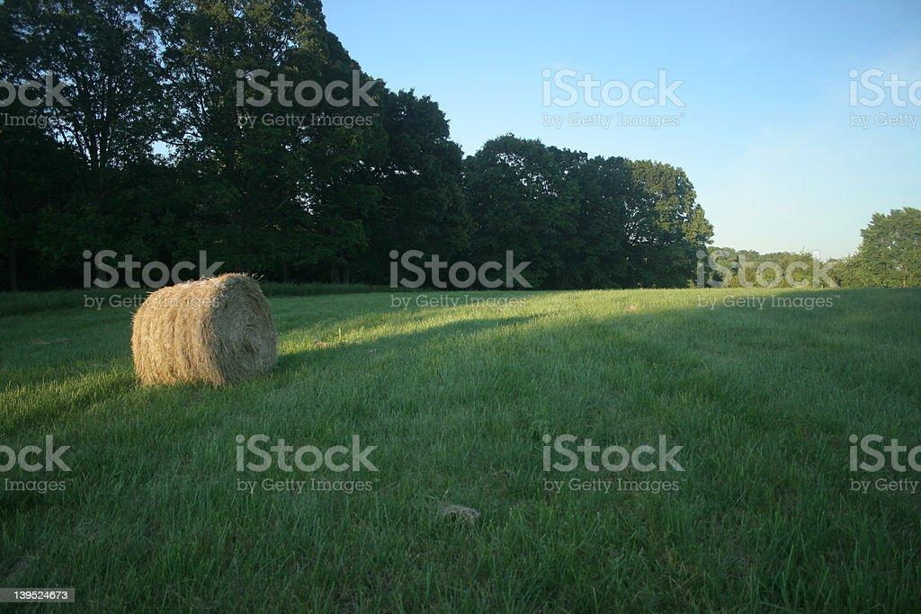 Roundbale in the Field stock photo