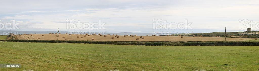 roundbales stock photo