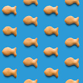 istock Rounded fresh crispy fish shaped cookies on light blue background. Seamless texture. Top view 1187184918