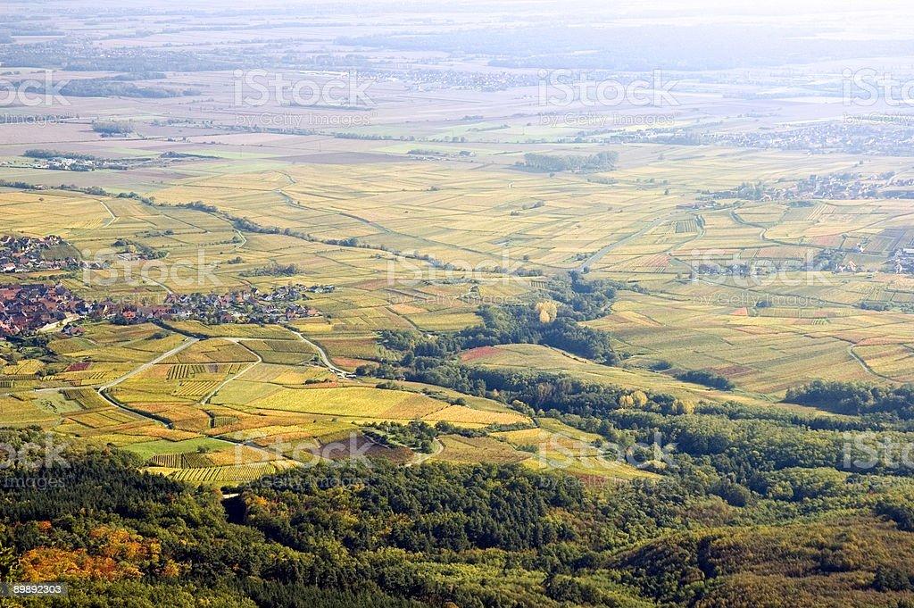 Route du Vin - Alsace, France stock photo