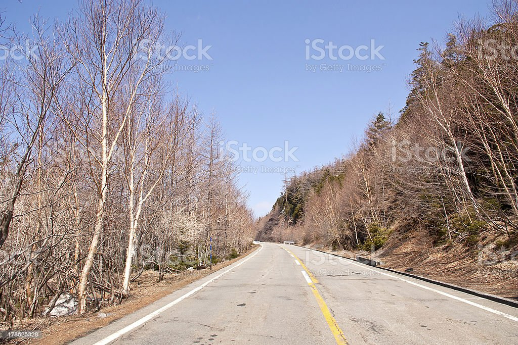 Route to the mountain. royalty-free stock photo